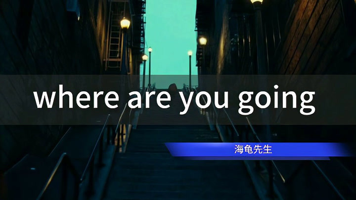 《where are you going 》海龟先生,小丑